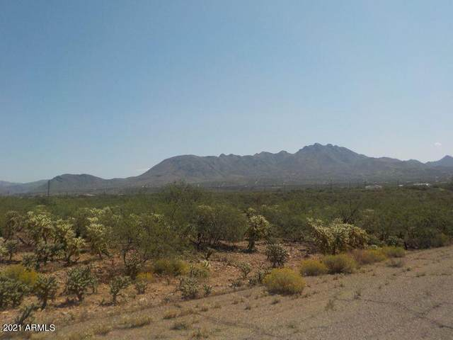 2043 Birch Court, Rio Rico, AZ 85648 (MLS #6195924) :: The Dobbins Team