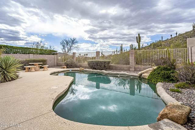 23214 N 25TH Street, Phoenix, AZ 85024 (MLS #6196004) :: Yost Realty Group at RE/MAX Casa Grande