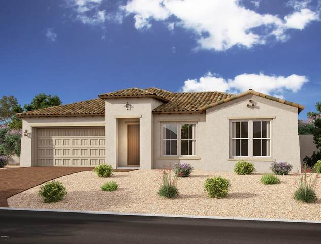 10728 E Talon Avenue, Mesa, AZ 85212 (MLS #6196015) :: The Ethridge Team