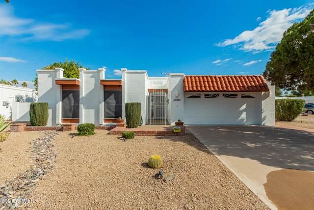 14015 N Medinan Drive, Phoenix, AZ 85022 (MLS #6196031) :: Yost Realty Group at RE/MAX Casa Grande