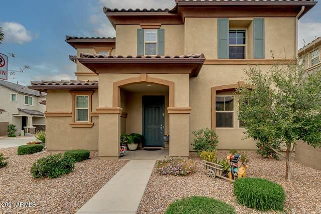 1540 N Balboa, Mesa, AZ 85205 (MLS #6196038) :: Yost Realty Group at RE/MAX Casa Grande