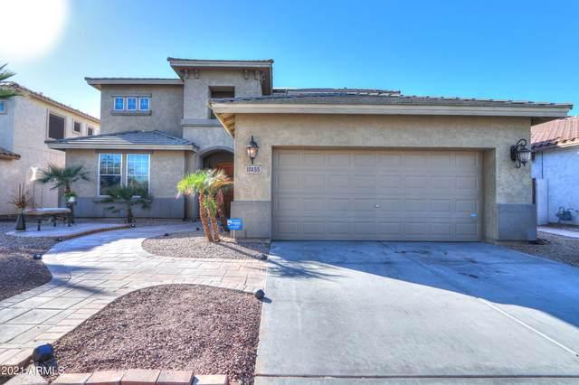 17455 W Elaine Drive, Goodyear, AZ 85338 (MLS #6196044) :: Yost Realty Group at RE/MAX Casa Grande
