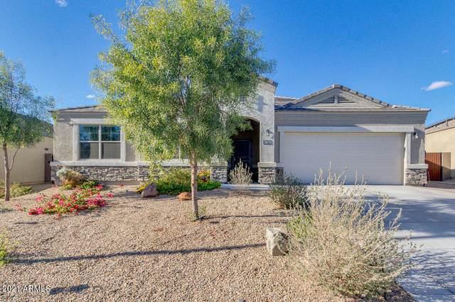 30170 W Fairmount Avenue, Buckeye, AZ 85396 (MLS #6196057) :: Homehelper Consultants