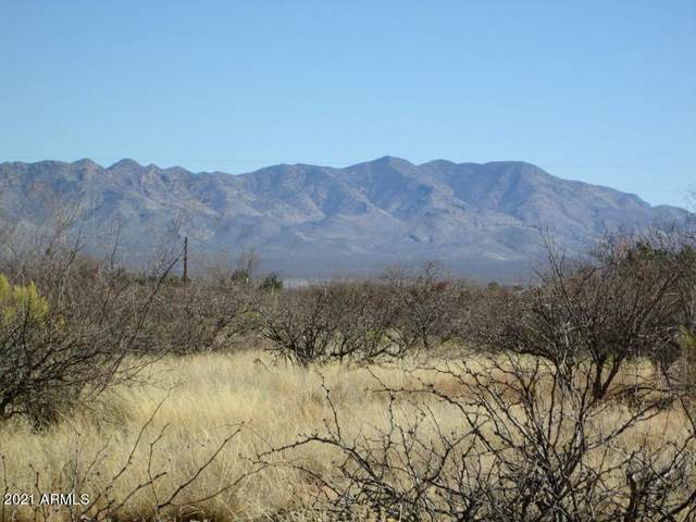 TBD E Chippewa Street, Hereford, AZ 85615 (MLS #6196104) :: The Everest Team at eXp Realty