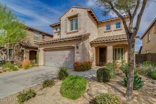 3820 E Matthew Drive, Phoenix, AZ 85050 (MLS #6196132) :: Yost Realty Group at RE/MAX Casa Grande
