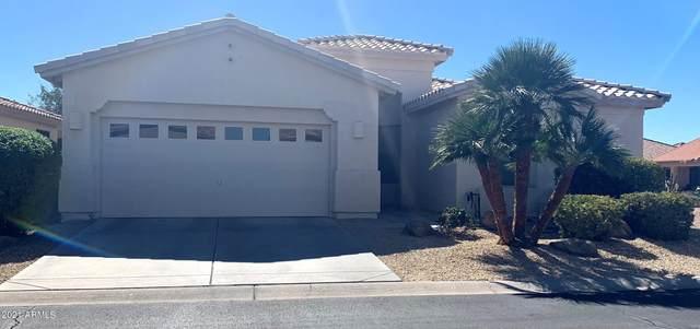10307 E Copper Drive, Sun Lakes, AZ 85248 (MLS #6196143) :: The Copa Team | The Maricopa Real Estate Company
