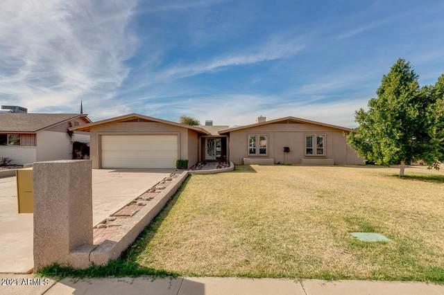 822 N Acacia, Mesa, AZ 85213 (MLS #6196383) :: Yost Realty Group at RE/MAX Casa Grande