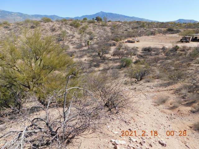 14215 E Avenida Elena, Tucson, AZ 85747 (MLS #6196430) :: Service First Realty