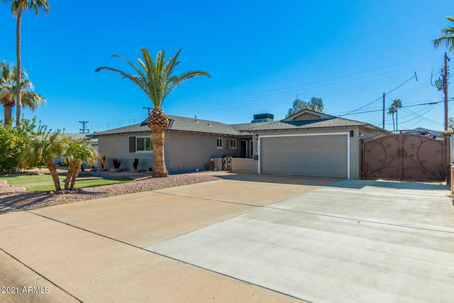 6443 E Vernon Avenue, Scottsdale, AZ 85257 (MLS #6196459) :: The Laughton Team