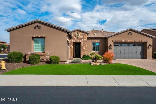 29529 N 129TH Glen, Peoria, AZ 85383 (MLS #6196464) :: Maison DeBlanc Real Estate