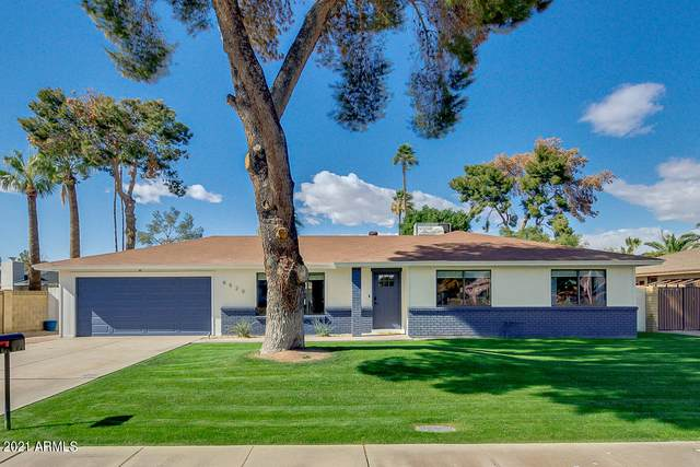 6520 S Terrace Road, Tempe, AZ 85283 (MLS #6196486) :: The Copa Team | The Maricopa Real Estate Company