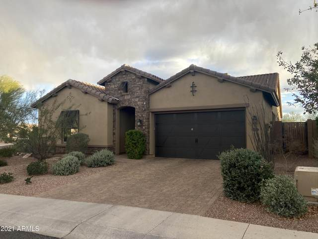5253 E Palo Brea Lane, Cave Creek, AZ 85331 (MLS #6196517) :: Yost Realty Group at RE/MAX Casa Grande