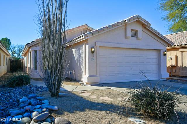664 N Terrace Road, Chandler, AZ 85226 (MLS #6196527) :: Yost Realty Group at RE/MAX Casa Grande