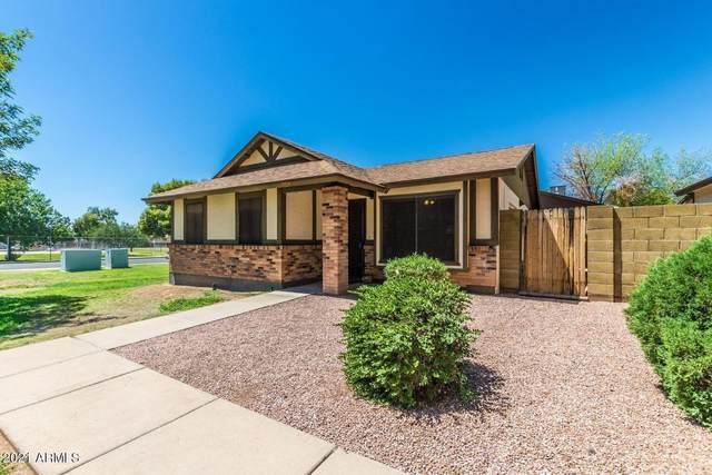 5135 E Evergreen Street #1204, Mesa, AZ 85205 (MLS #6196583) :: Yost Realty Group at RE/MAX Casa Grande