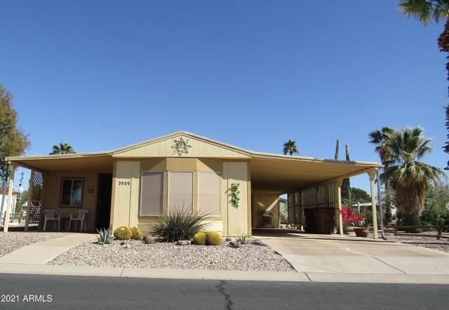 3609 N North Dakota Avenue A, Florence, AZ 85132 (MLS #6196627) :: The Laughton Team