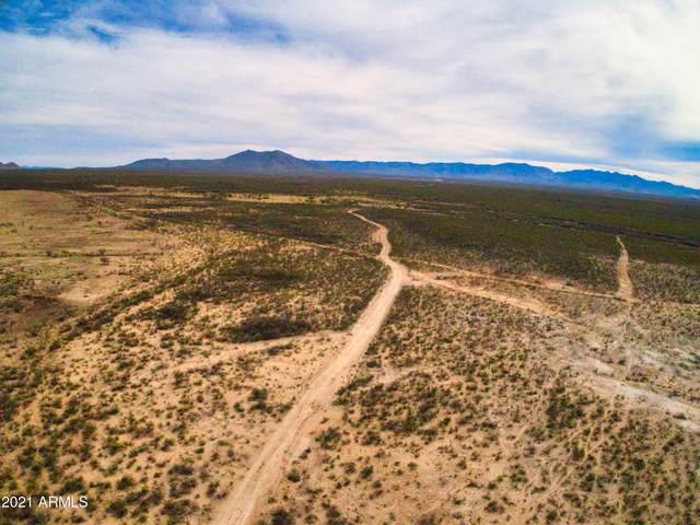 2467 S Dinwiddie Ranch Road, Tombstone, AZ 85638 (MLS #6196630) :: Yost Realty Group at RE/MAX Casa Grande