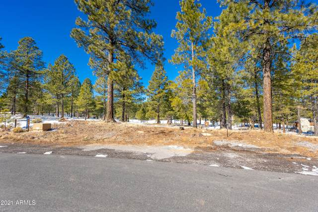 1600 E Castle Hills Drive, Flagstaff, AZ 86005 (MLS #6196633) :: Executive Realty Advisors
