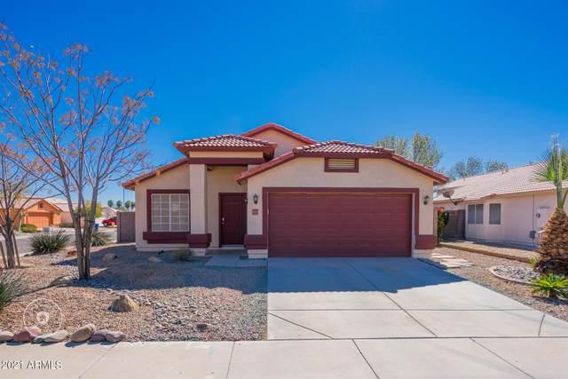 11575 W Holly Street, Avondale, AZ 85392 (MLS #6196663) :: Yost Realty Group at RE/MAX Casa Grande