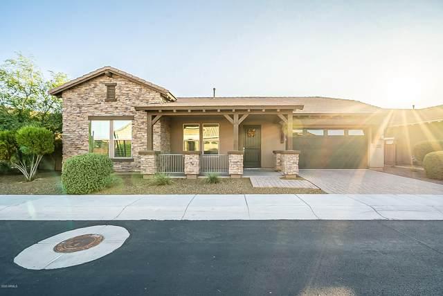 3113 E Half Hitch Place, Phoenix, AZ 85050 (MLS #6196826) :: Executive Realty Advisors