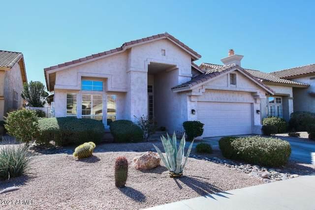 4235 E Desert Marigold Drive, Cave Creek, AZ 85331 (MLS #6196834) :: Yost Realty Group at RE/MAX Casa Grande