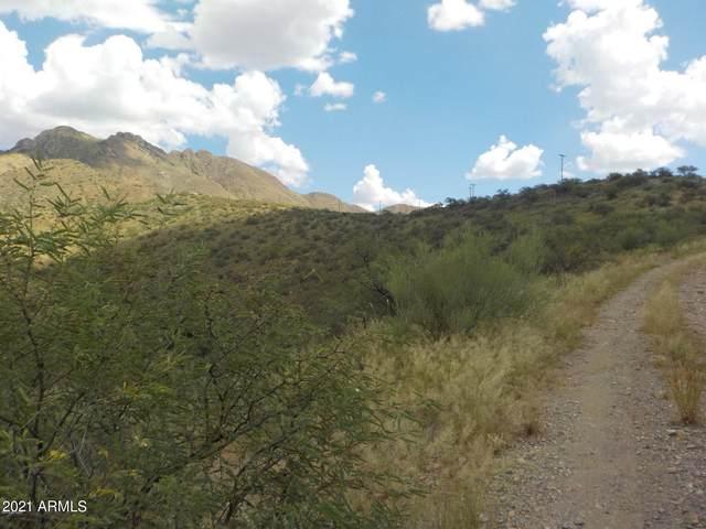 188 Vereda Cabrilla Lane, Rio Rico, AZ 85648 (MLS #6196951) :: The Everest Team at eXp Realty