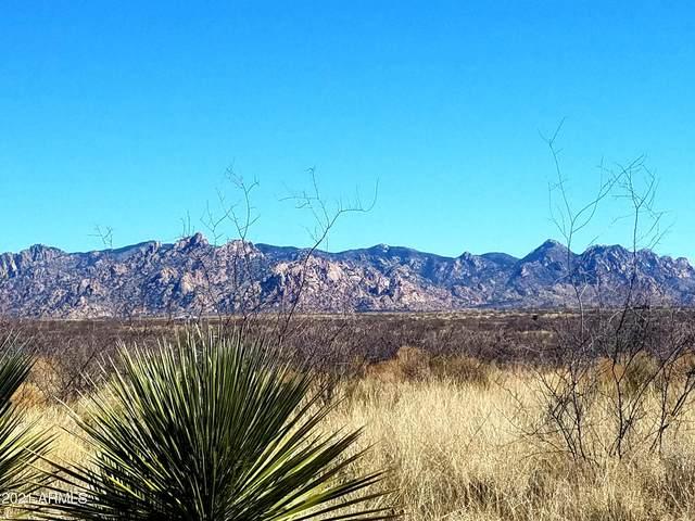 TBD E Cougar Trail, Saint David, AZ 85630 (MLS #6196953) :: Yost Realty Group at RE/MAX Casa Grande