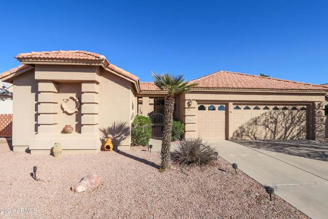 24825 S Ribbonwood Drive, Sun Lakes, AZ 85248 (MLS #6197011) :: Yost Realty Group at RE/MAX Casa Grande
