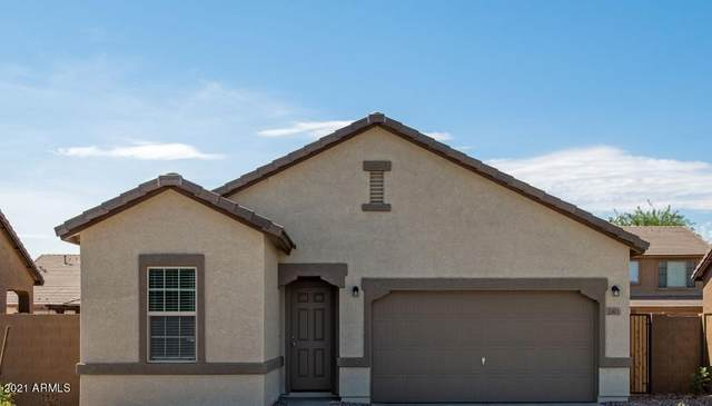 2392 E Santa Ynez Drive, Casa Grande, AZ 85194 (MLS #6197046) :: Long Realty West Valley