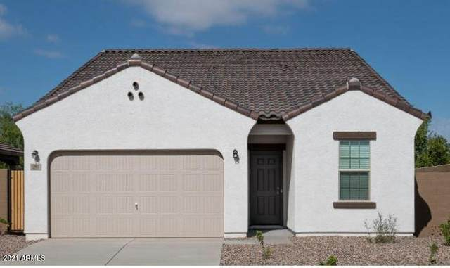 382 S Borromeo Drive, Casa Grande, AZ 85194 (MLS #6197050) :: Long Realty West Valley