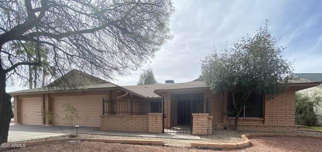 4407 W Bluefield Avenue, Glendale, AZ 85308 (MLS #6197056) :: Yost Realty Group at RE/MAX Casa Grande