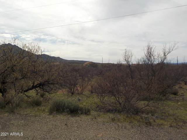 123 Via Venezuela, Rio Rico, AZ 85648 (MLS #6197275) :: The Garcia Group