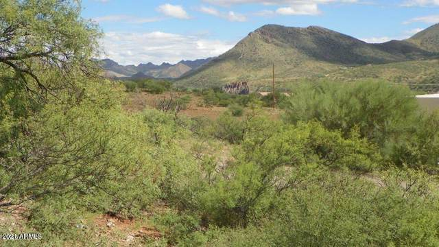 1886 Via Granada, Rio Rico, AZ 85648 (MLS #6197280) :: Long Realty West Valley
