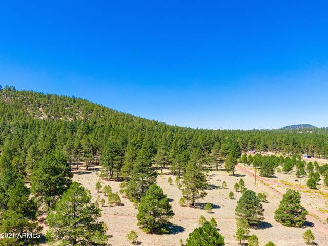 970 S Appaloosa Trail, Williams, AZ 86046 (MLS #6197362) :: My Home Group