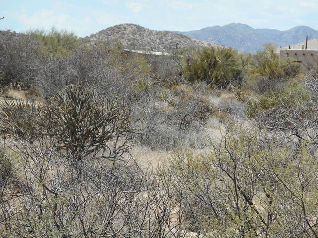 13906 E Villa Cassandra Drive, Scottsdale, AZ 85262 (MLS #6197568) :: Klaus Team Real Estate Solutions