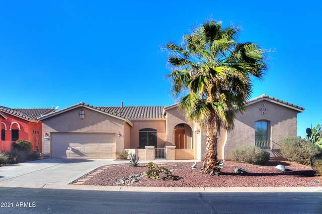 42742 W Misty Morning Lane, Maricopa, AZ 85138 (MLS #6197590) :: Yost Realty Group at RE/MAX Casa Grande