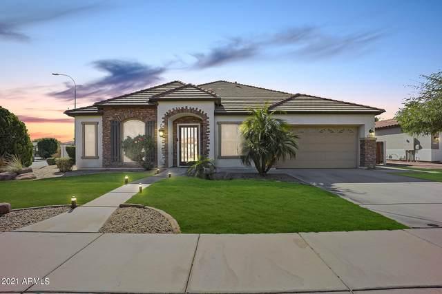 439 E Horseshoe Drive, Chandler, AZ 85249 (MLS #6197606) :: Yost Realty Group at RE/MAX Casa Grande