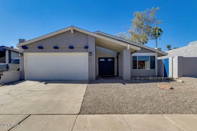 2234 N 87TH Terrace, Scottsdale, AZ 85257 (MLS #6197612) :: D & R Realty LLC