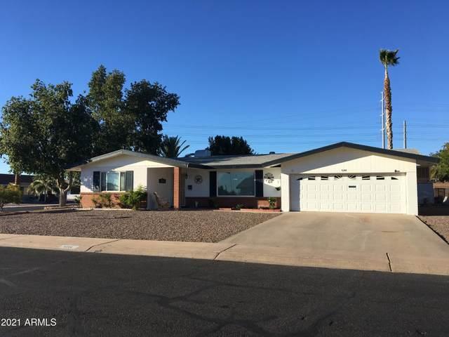 6206 E Butte Street, Mesa, AZ 85205 (MLS #6197627) :: Yost Realty Group at RE/MAX Casa Grande