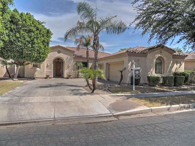 1934 W Lynx Court, Chandler, AZ 85248 (MLS #6197652) :: Yost Realty Group at RE/MAX Casa Grande