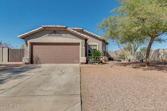 6264 N 70TH Lane, Glendale, AZ 85303 (MLS #6197716) :: Yost Realty Group at RE/MAX Casa Grande