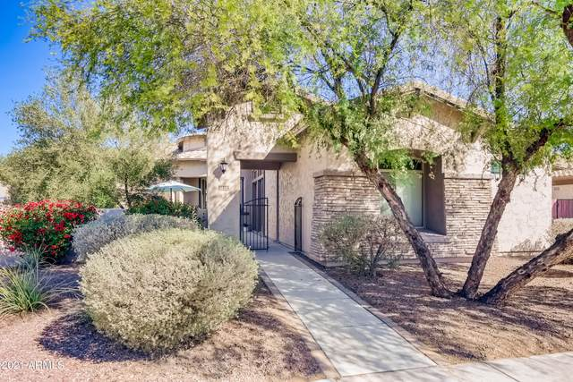 3112 E Birchwood Place, Chandler, AZ 85249 (MLS #6197726) :: Yost Realty Group at RE/MAX Casa Grande