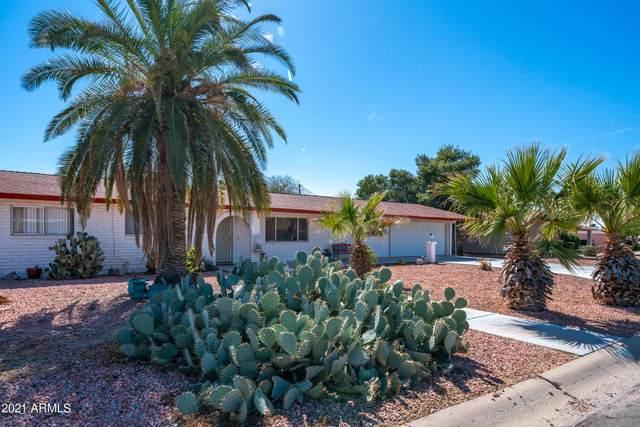 915 E Hondo Avenue, Apache Junction, AZ 85119 (MLS #6197728) :: The Laughton Team