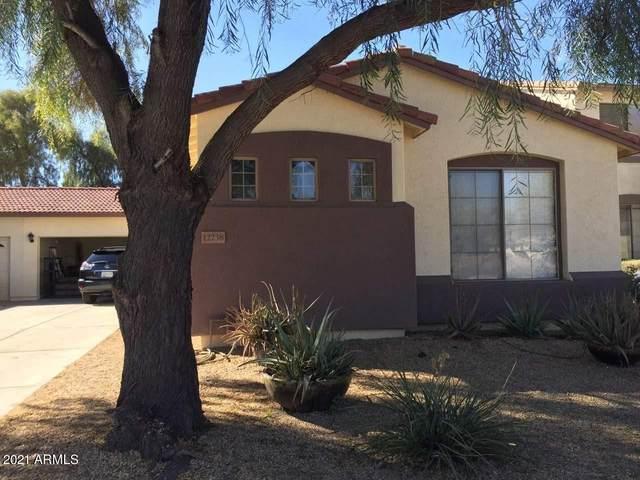 12738 N 88TH Drive, Peoria, AZ 85381 (MLS #6197862) :: My Home Group