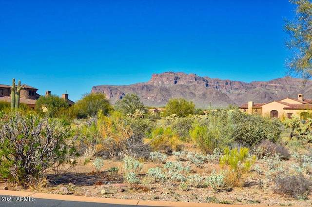 3488 S First Water Trail, Gold Canyon, AZ 85118 (MLS #6197877) :: My Home Group