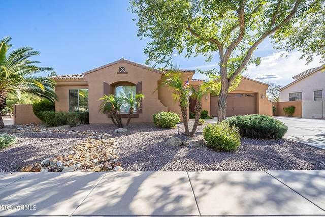 523 E Kaibab Place, Chandler, AZ 85249 (MLS #6197923) :: Yost Realty Group at RE/MAX Casa Grande