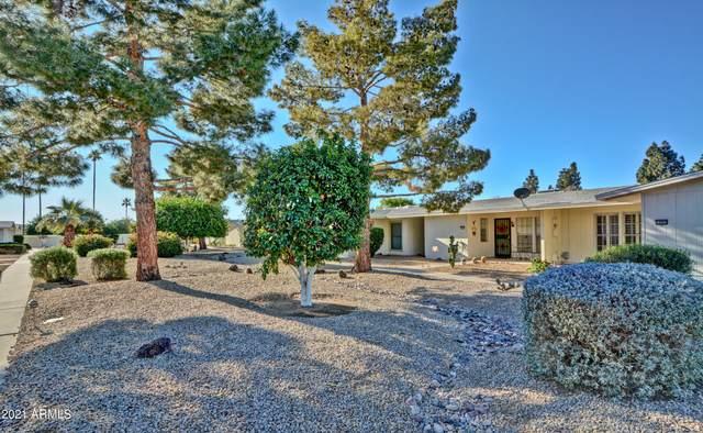 13253 W Aleppo Drive, Sun City West, AZ 85375 (MLS #6197963) :: Yost Realty Group at RE/MAX Casa Grande