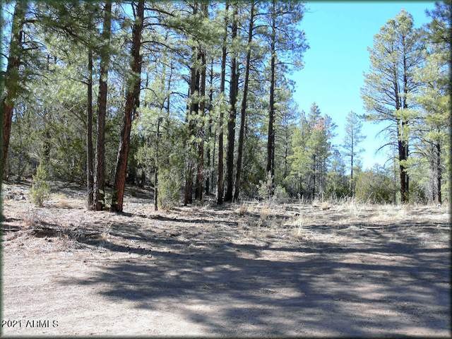 1658 Elk Canyon Road, Heber, AZ 85928 (MLS #6198056) :: Midland Real Estate Alliance