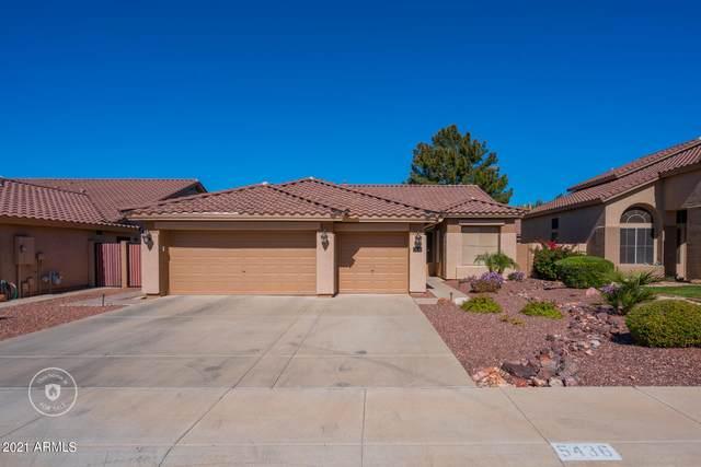 5436 W Greenbriar Drive, Glendale, AZ 85308 (MLS #6198079) :: Yost Realty Group at RE/MAX Casa Grande