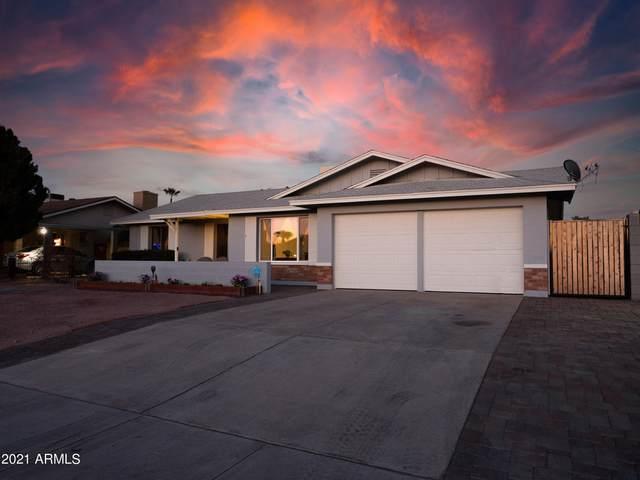 11229 N 33RD Avenue, Phoenix, AZ 85029 (MLS #6198117) :: Yost Realty Group at RE/MAX Casa Grande