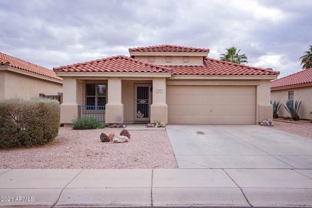 2225 W 23RD Avenue, Apache Junction, AZ 85120 (MLS #6198202) :: Executive Realty Advisors
